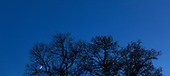 Evening sky.<br /> Picture date: Saturday April 1, 2017.<br /> Photograph by Christopher Ison &copy;<br /> 07544044177<br /> chris@christopherison.com<br /> www.christopherison.com