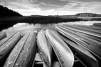 Au Sable River, Huron National Forest