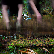 Owen Dudley and Damian Pullar clear the brush for a new mountain bike trail near Bellingham, Washington.