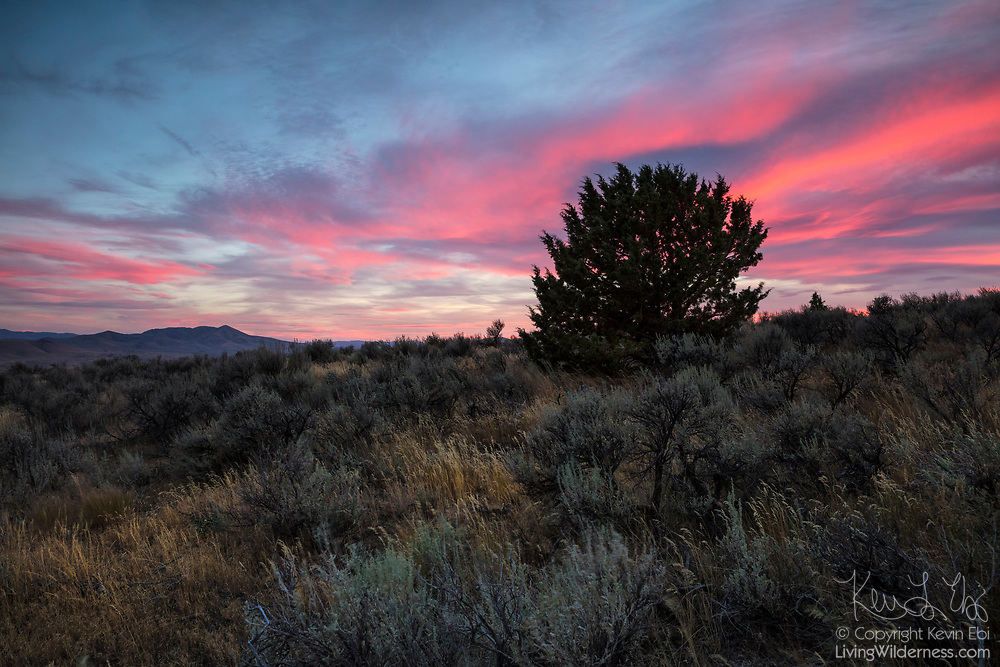 A band of altostratus clouds reflect the red color of sunset over the Mormon Basin in Malheur County, Oregon. Cow Valley Butte, a 5,405-foot (1647-meter) peak, is visible on the horizon on the left side of the image.