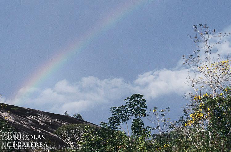Arc en ciel au dessus d'un inselberg en Guyane Française