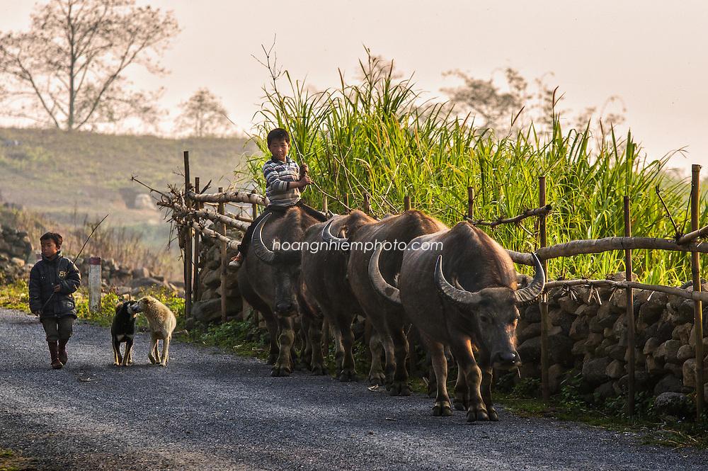 Vietnam Images-children-Sapa hoàng thế nhiệm