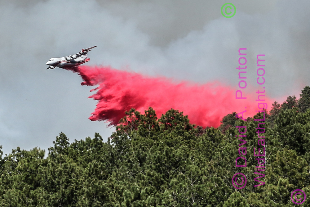 Slurry bomber dropping water/retardant mix on forest between forest  fire and residences, © 2017 David A. Ponton