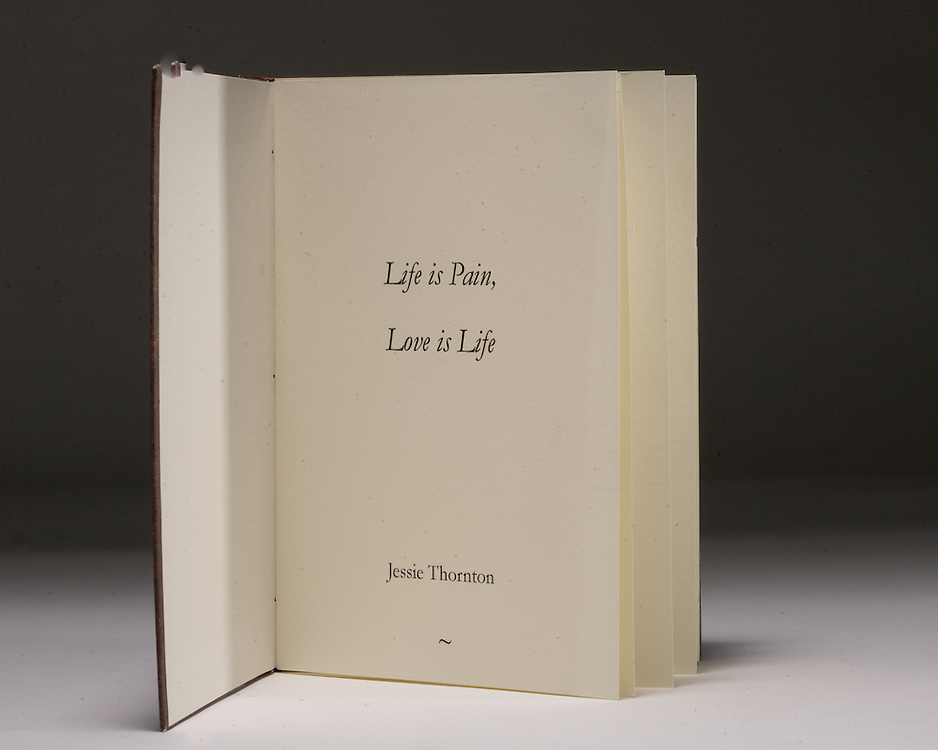Artist: Sarah Jane Ripp. Two signature pamphlet cased book of poems.