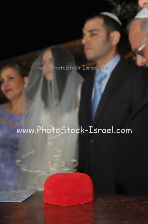 Jewish Wedding Bride and groom under the chupah