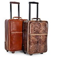 Harrods Luggage 18.04.2013