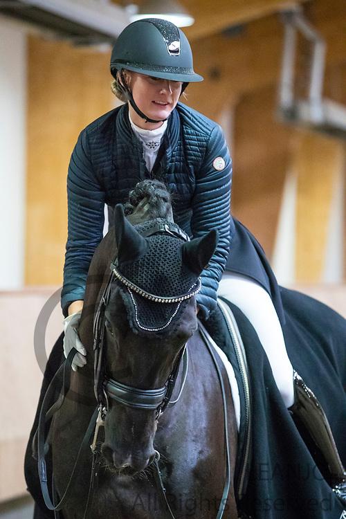 Denise Nekeman - Boston STH<br /> KNHS Indoorkampioenschappen 2018<br /> © DigiShots