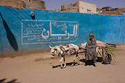 A local farmer on his cart is pulled along past a blue wall and arabic writing in a village near Medinet Habu on the West Bank of Luxor, Nile Valley, Egypt.