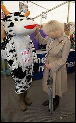 The Duchess of Cornwall meets a Hug a cow during a tour of The Young Farmers tent at the Royal Bath & West Show, Royal Bath & West Showground, Shepton Mallet, Somerset, United Kingdom, Wednesday, 28th May 2014. Picture by Andrew Parsons / i-Images