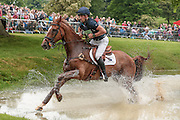 Bango ridden by Tim Price (New Zealand) at Bramham International Horse Trials 2016 at  at Bramham Park, Bramham, United Kingdom on 11 June 2016. Photo by Mark P Doherty.