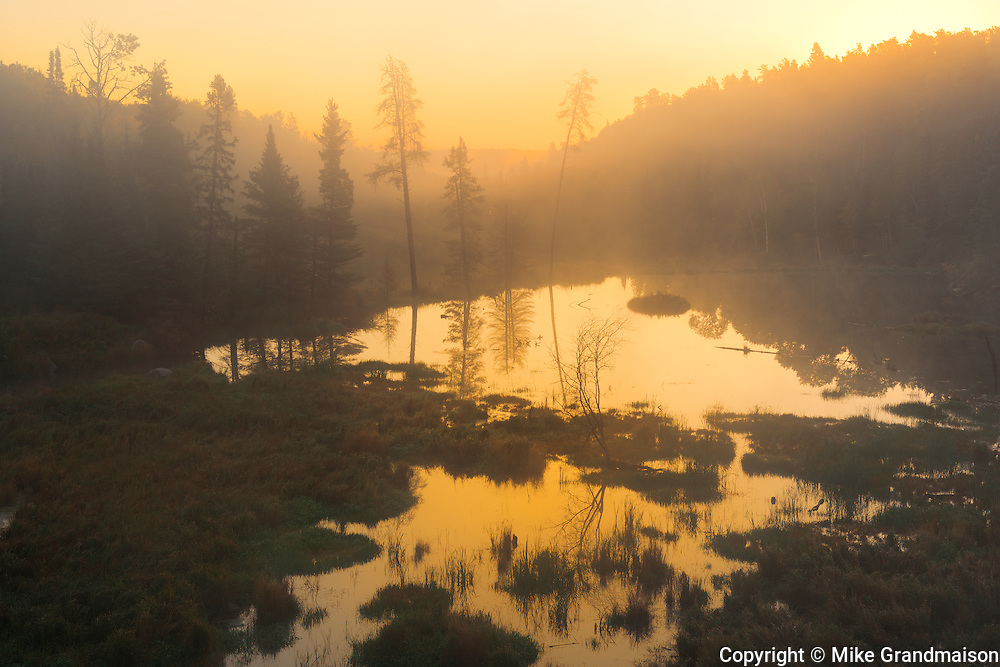 Sunrise over boreal forest and wetland. Kenora, Ontario