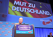 AfD  Convention 300416