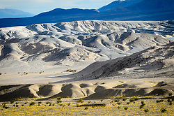 Death Valley National Park Visitors come not only to experience the record heat but also the beauty. Despite the desert conditions, the park is known for its spring wildflowers. Under perfect conditions, the park experiences a rare event known as a wildflower &quot;super bloom&quot; which produces a sea wildflowers. Most of the desert wildflowers are annuals. This ensures their survival as this allows them to lie dormant as seeds during times of drought. Here, Desert Gold, also known as Hairy Desert Sunflower, blooms below the badlands of the Kit Fox Hills in Death Valley National Park.<br /> <br /> Death Valley National Park, located in eastern California near the border with Nevada is one of the hottest spots on earth, holding the hottest recorded air temperature of 134 &deg;F. The Park also is location of the lowest spot in North America, 282 feet below sea level at the vast salt flats at Badwater Basin. At 3.4 million acres, the park is the largest national park in the contiguous United States. Death Valley National Park sits between the Panamint Range on the west  and Amargosa Range on the east.