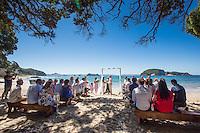 ally & steve wedding on the coromandel beach wedding at hahei reception at stone terrace hotwater beach photography by felicity jean photography coromandel photographer