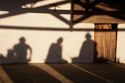 Sombra de vaqueiros  na regiao do Agreste Pernambucano.40º Missa do Vaqueiro/ Shadow Cowboys in Northeas, Pernambuco.Ano 2010.Foto Adri Felden/Argosfoto