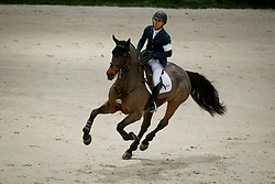 Farrington Kent, USA, Voyeur<br /> Credit Suisse Grand Prix<br /> CHI de Genève 2017<br /> © Hippo Foto - Dirk Caremans<br /> 08/12/2017