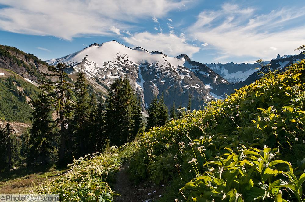 Mount Ruth, seen from Hannegan Peak hike, Mount Baker Wilderness, North Cascades, Washington, USA