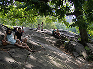 Relaxing on a rock in Central Park