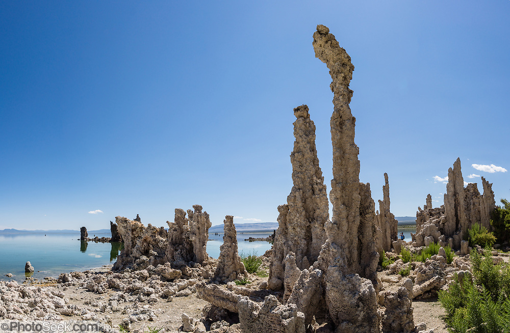 Intriguing towers of calcium-carbonate decorate the South Tufa Area, Mono Lake Tufa State Natural Reserve, Lee Vining, California, USA. The Reserve protects wetlands that support millions of birds, and preserves Mono Lake's distinctive tufa towers -- calcium-carbonate spires and knobs formed by interaction of freshwater springs and alkaline lake water. Mono Lake has no outlet and is one of the oldest lakes in North America. Over the past million years, salts and minerals have washed into the lake from Eastern Sierra streams and evaporation has made the water 2.5 times saltier than the ocean. This desert lake has an unusually productive ecosystem based on brine shrimp, and provides critical nesting habitat for two million annual migratory birds that feed on the shrimp and blackflies. Since 1941, diversion of lake water tributary streams by the city of Los Angeles lowered the lake level, which imperiled the migratory birds. In response, the Mono Lake Committee won a legal battle that forced Los Angeles to partially restore the lake level. This panorama was stitched from 4 overlapping photos.