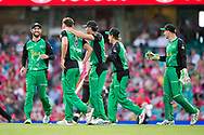 Melbourne Stars player Jackson Coleman celebrates his wicket of Sydney Sixers player Daniel Hughes at the Big Bash League cricket match between Sydney Sixers and Melbourne Stars at The Sydney Cricket Ground in Sydney, Australia