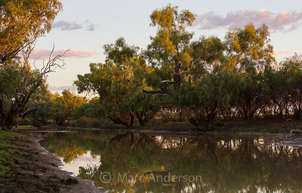 Late afternnon light on a tree-lined creek in the Australian outback, near Longreach, Queensland.