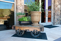 Mining railroad car used as a table for planters, Niner Wine Estates winery, Paso Robles, California, United States of America