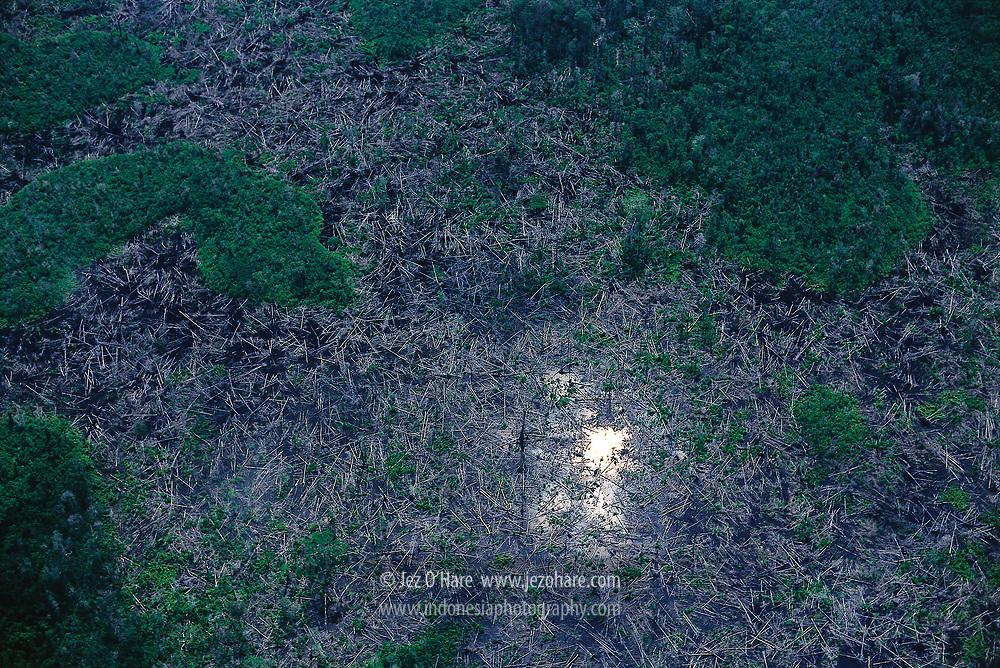 Clear cut rainforest, Jempang, Mahakam River, East Kalimantan, Indonesia.