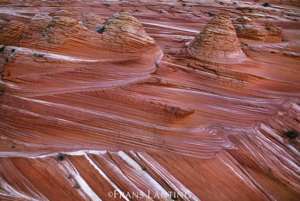 Banded sandstone (aerial), Vermilion Cliffs National Monument, Arizona
