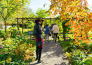 Old Westbury, New York, U.S. October 19, 2019. At front center, ROXANNE BINASO, of New Hyde Park, turns around to look behind her, as she and other guests walk through a garden in autumn during an art tour at Old Westbury Gardens, during Closing Reception for Jerzy Kędziora (Jotka) Balance in Nature outdoor sculptures exhibit.