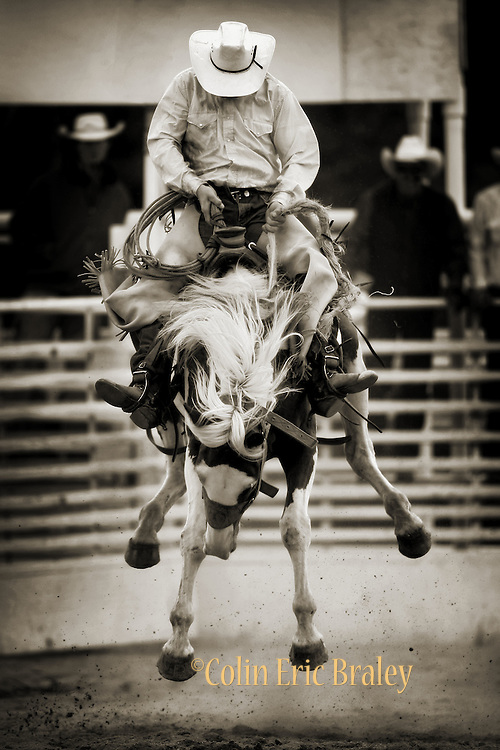 "COWBOY RODEO--Cowboys from the region's cattle ranches take part in the saddle bronc riding competition at the annual Ranch Hand Rodeo in Randolph, Utah, August 29, 2009. Workers from various ranches in the region battle for bragging rights in the event many call one of the few ""true cowboy"" experiences left in the west."