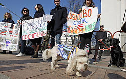 April 4, 2017 - Kiev, Ukraine - Ukrainian activists and their dogs take a part at a rally against cruel for animals, outside the Ukrainian Parliament in Kiev, Ukraine, on 4 April 2017. Activists required that the lawmakers vote for a bill N 5119-1,that would implement stronger criminal punishment for animal cruelty. (Credit Image: © Serg Glovny via ZUMA Wire)