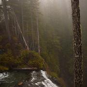 Edge of Narada Falls - Mt. Rainier National Park, WA