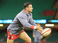Mike Phillips of Wales before the International Test Match match at the Millennium Stadium, Cardiff<br /> Picture by Michael Whitefoot/Focus Images Ltd 07969 898192<br /> 08/11/2014
