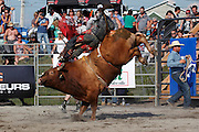 Wildtime Rodeo 2015, Valleyfield, Quebec, Canada