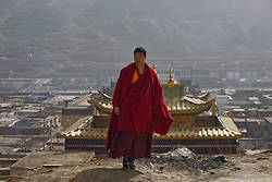 Tibet New Year - China - Edward Wong<br /> A monk is seen at Rongwo monastery  (Longwu in Chinese) in Rebkong (Tongren in Chinese), Qinghai province in China, February 24, 2009. Photo by Shiho Fukada for The New York Times