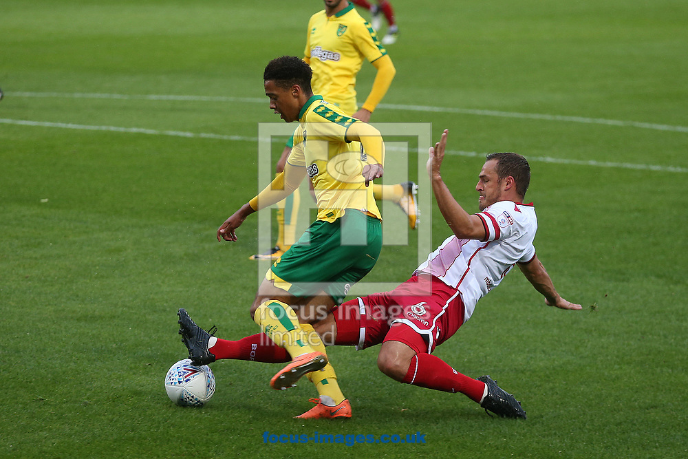 Jamal Lewis of Norwich is fouled by Luke Wilkinson of Stevenage and  openly is awarded by Referee Darren Deadman during spot the Pre-season Friendly match at the Lamex Stadium, Stevenage<br /> Picture by Paul Chesterton/Focus Images Ltd +44 7904 640267<br /> 11/07/2017