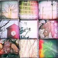 Man made and Nature nine views