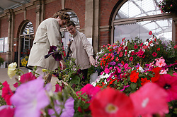 Two elderly women in a train station looking at a flower display,