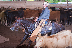 September 24, 2017 - Minshall Farm Cutting 6, held at Minshall Farms, Hillsburgh Ontario. The event was put on by the Ontario Cutting Horse Association. Riding in the $1,000 Amateur Class is James Cook on Duals Peps Tom Cat owned by the rider.