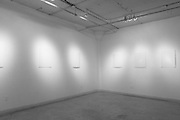 Master of Fine Arts Installation. Commonwealth Gallery. Madison, Wisconsin.