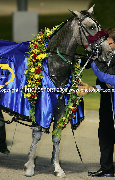 Mi Muchacho after winning the Trillian Trust Auckland Trotting Cup at Alexandra Park, Auckland, New Zealand on 10 March 2006. Photo: Tim Hales/PHOTOSPORT<br />