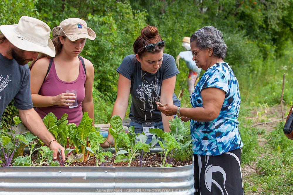 Black Creek Community Farm Festival 2015