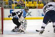 17 February, 2006 - Anchorage, AK:  Alaska goal keeper Matt Underhill keeps his eyes on the puck anticipating a shot during the Alaska Aces 5-1 victory over the visiting Long Beach IceDogs at Sullivan Arena.