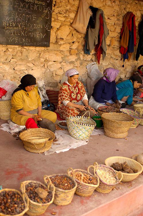 Women working on D'Argane nuts, Coorperative Feminine Tiguemine, near Essaouira, Morocco