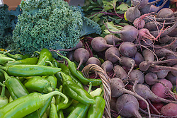 North America, United States, Washington, Kirkland, organic vegetables (peppers, turnips, kale) at Farmers Market