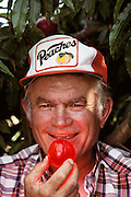 "Floyd Zaiger with a ""Pluot"", a cross between a plum and an apricot. (the fruit is back lit with a pencil light battery stobe. Floyd Zaiger (Born 1926) is a biologist who is most noted for his work in fruit genetics. Zaiger Genetics, located in Modesto, California, USA, was founded in 1958. Zaiger has spent his life in pursuit of the perfect fruit, developing both cultivars of existing species and new hybrids such as the pluot and the aprium. Zaiger with a pluot fruit (plum & apricot) -MODEL RELEASED. 1983."