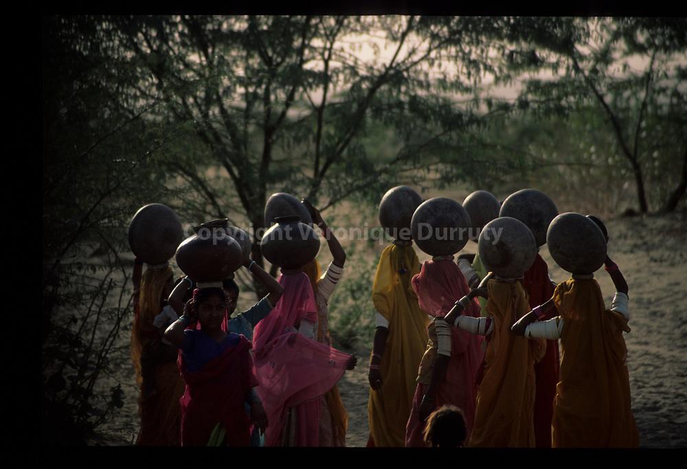 La corvee d'eau. Region de Khuri, désert du Thar, Rajasthan, Inde // Near Khuri, Rajasthan, India