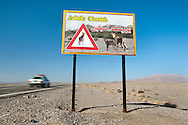 Cheetah road sign, Naybandan Wildlife Reserve, Iran