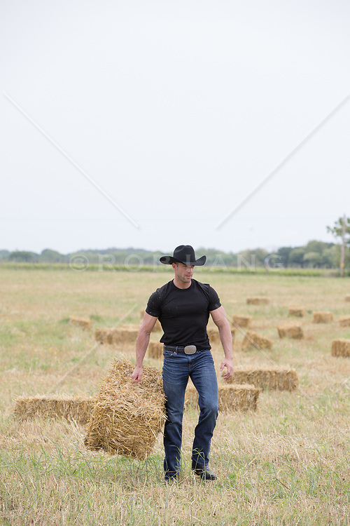 working cowboy carrying a bale of hay