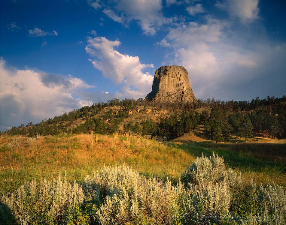 Devils Tower rising above prairies, Devils Tower National Monument Wyoming USA